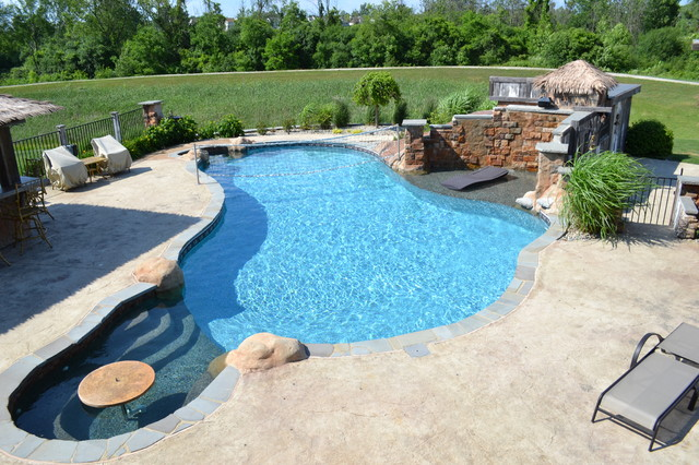 Hybrid swimming pool plo tropical pool detroit for Pool design with tanning ledge