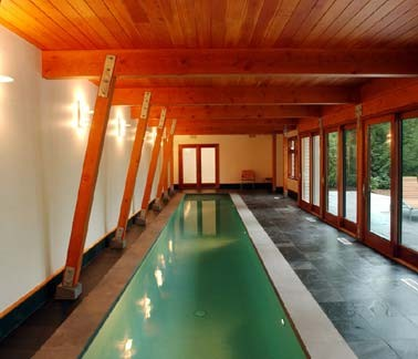 Indoor Lap Pool modern-pool