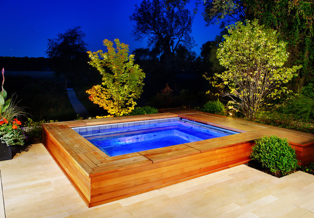 Inground Pool New Buffalo Michigan Traditional Pool Chicago By Platinum Poolcare