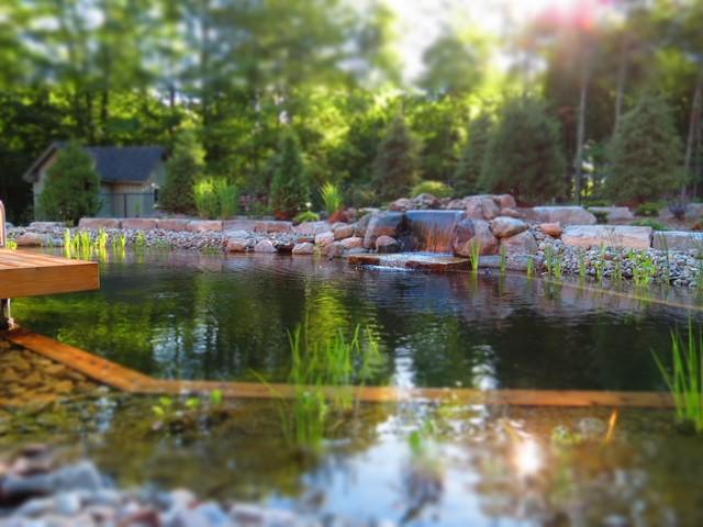 Baño Grande A Natural Swimming Pool:Innisfill Natural Swimming Pool – Clásico – Piscina – toronto – de