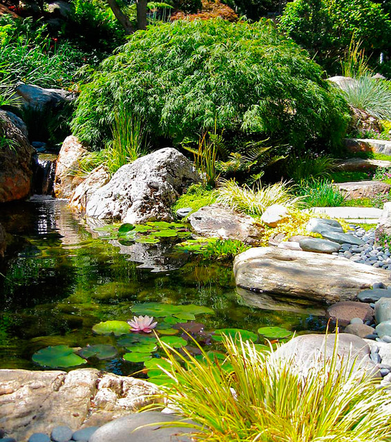 Japanese house garden asian pool other metro by for Japanese garden pool