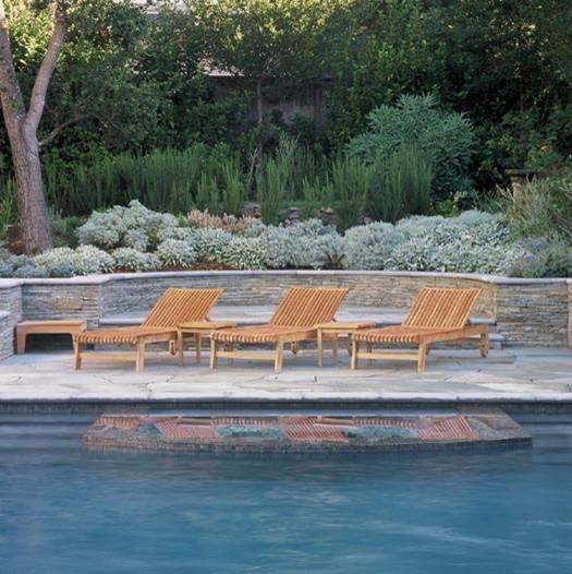 Kentfield - Mount Tam View traditional-pool