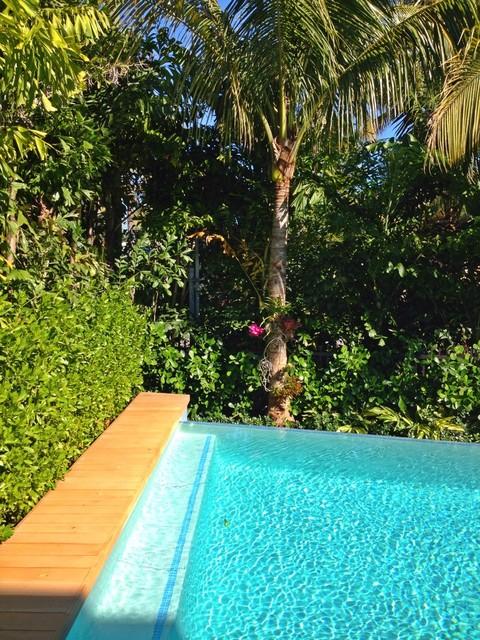 Key Biscayne Residence modern-pool