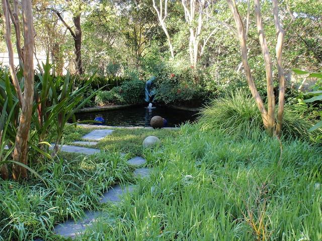 Koi pond transitional pool houston by r michael for Koi for sale houston