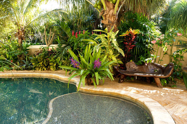 Good Landscape Designs Tropical Pool