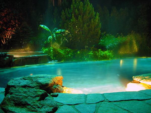 Landscape Lighting modern-pool