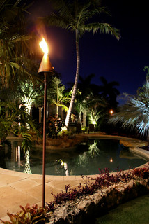 Led Fuel Tiki Torch Tropical Outdoor Lighting Other