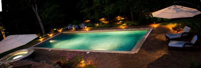 Lighting & Landscaping traditional-pool