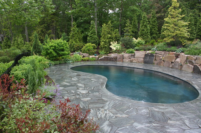 Maine Retreat traditional pool