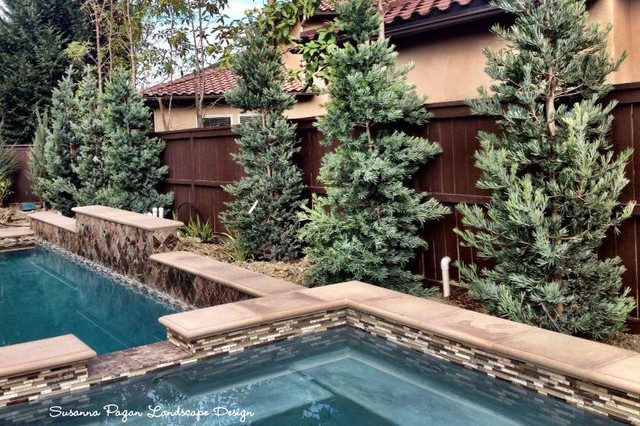 Maloney Residence traditional-pool