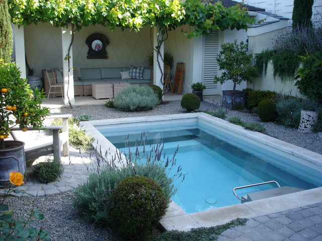 Manhattan beach mediterranean pool los angeles by for Pool design los angeles