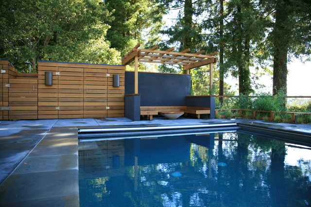 Mill Valley Hills modern-pool
