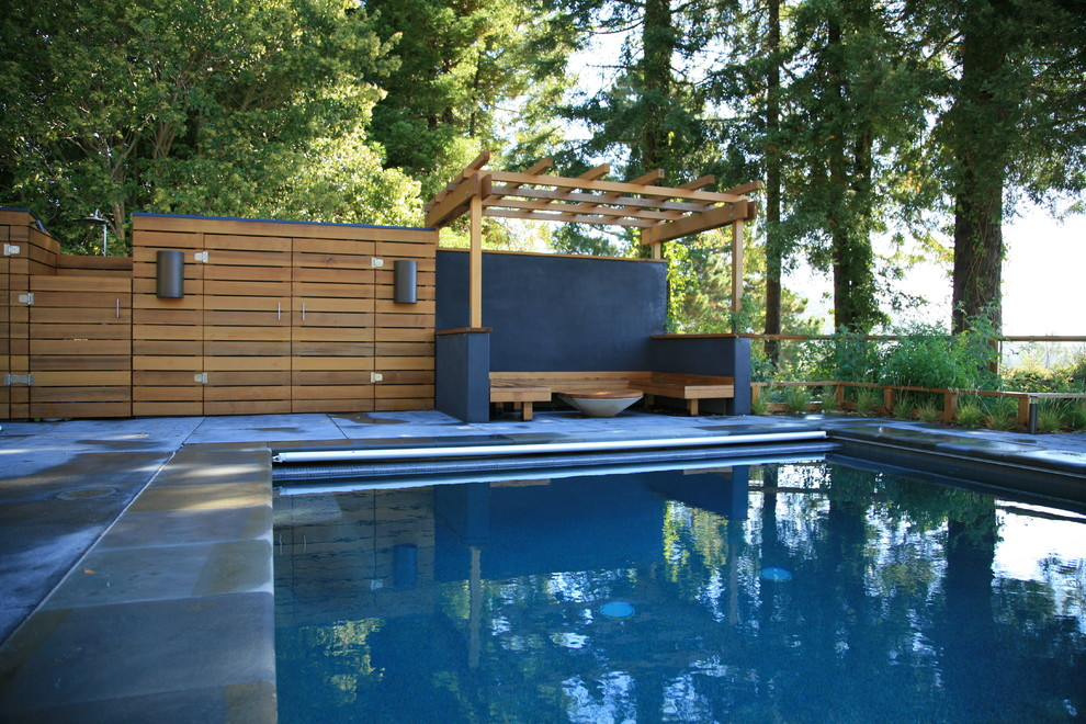 Mid-sized minimalist backyard rectangular and concrete pool photo in San Francisco
