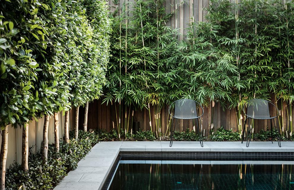Minimalist pool photo in Melbourne