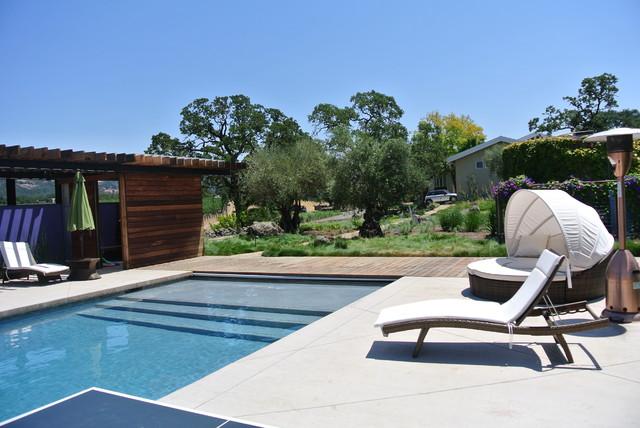 Hilltop hideaway modern pool san francisco by for Modern pool landscaping