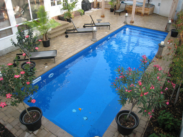 Backyard Rectangle Pools : Modern Rectangle Pool Design  Tropical  Pool  other metro  by