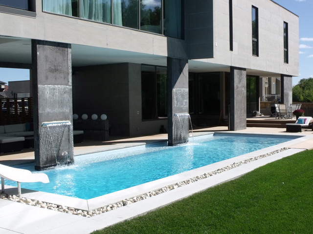 Modern Rectangle Pool Design Tropical Other