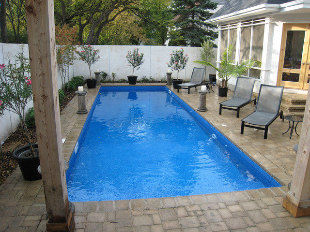 Modern Rectangle Pool Design - Tropical - Pool - Other - by Oasis ...