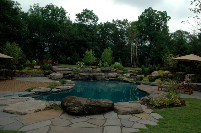 Natural lagoon pool Traditional Pool New York by Jardin