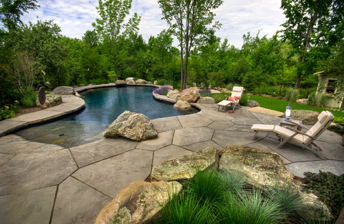 10 reasons to consider natural swimming pools install it for Rustic pools