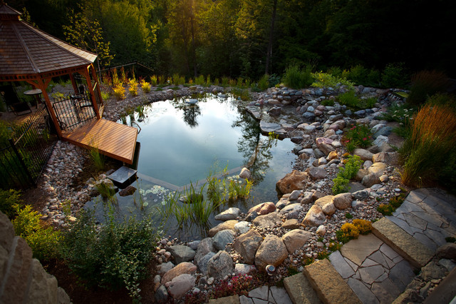Pool - small traditional backyard stone and custom-shaped natural pool idea in Toronto