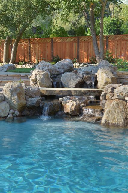 Natural Swimming Pool in Alamo, Ca mediterranean-pool