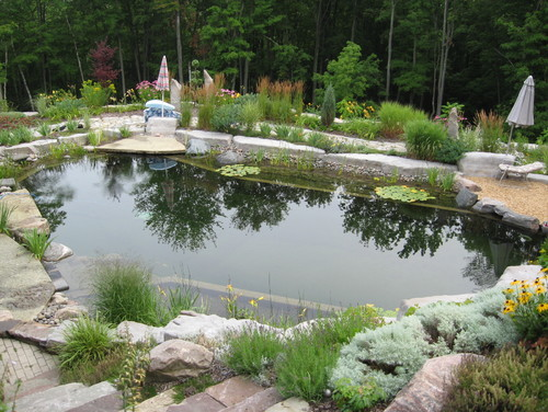 Add a Chemical-Free Swimming Pool to Your New England Home ...
