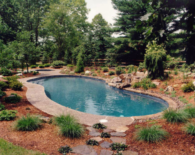 New Concrete Pools tropical-pool