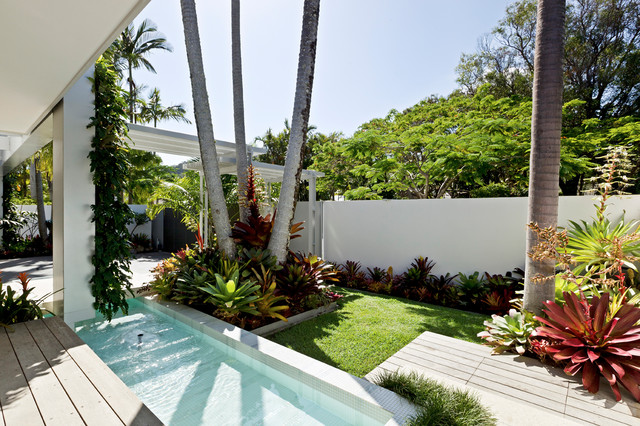 Noosa Australia Tropical Pool Brisbane By 4blue