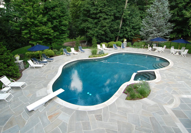 Great Outdoor Pool Patio Design U0026 Installation Bergen County Northern NJ  Traditional Pool