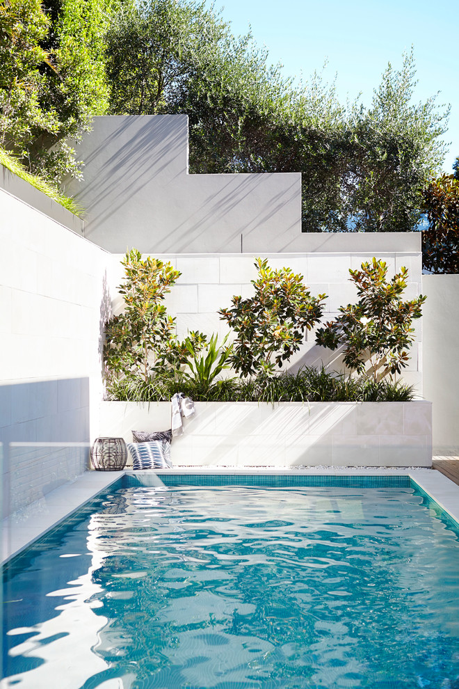 Example of a small trendy backyard rectangular pool design in Sydney