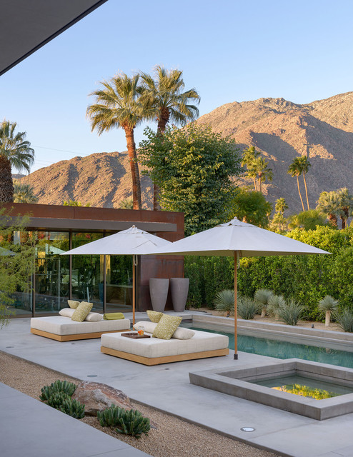 Palm springs retreat contemporary pool denver by - Palm springs swimming pool contractors ...