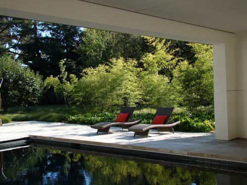 Palo Alto contemporary pool