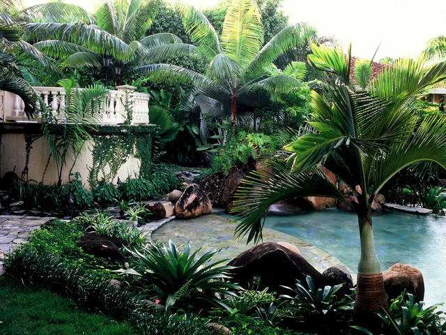 Panama Garden tropical pool