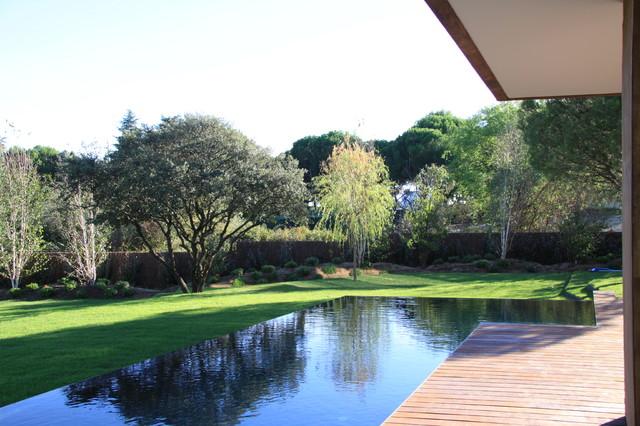 Ejemplo de casa de la piscina y piscina alargada, contemporánea, de tamaño medio, a medida, en patio trasero