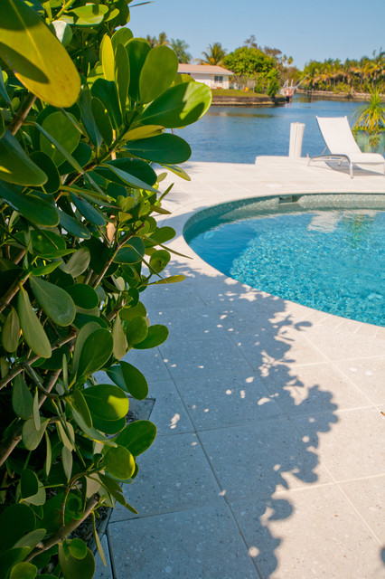 Poinciana Heights traditional-pool