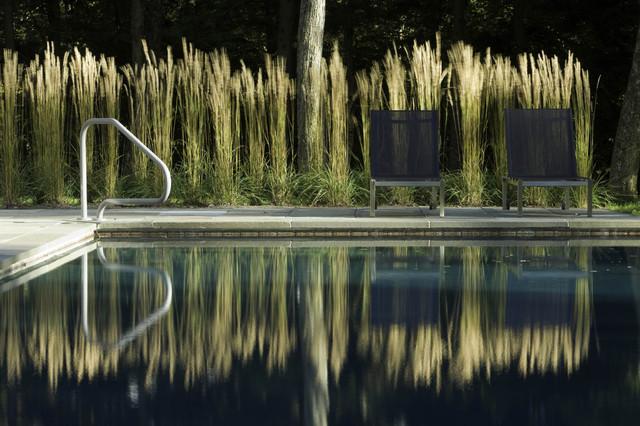 Pool amp House Modern pool