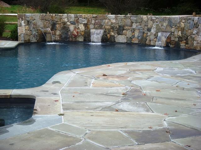 Pool Area renovation traditional-pool