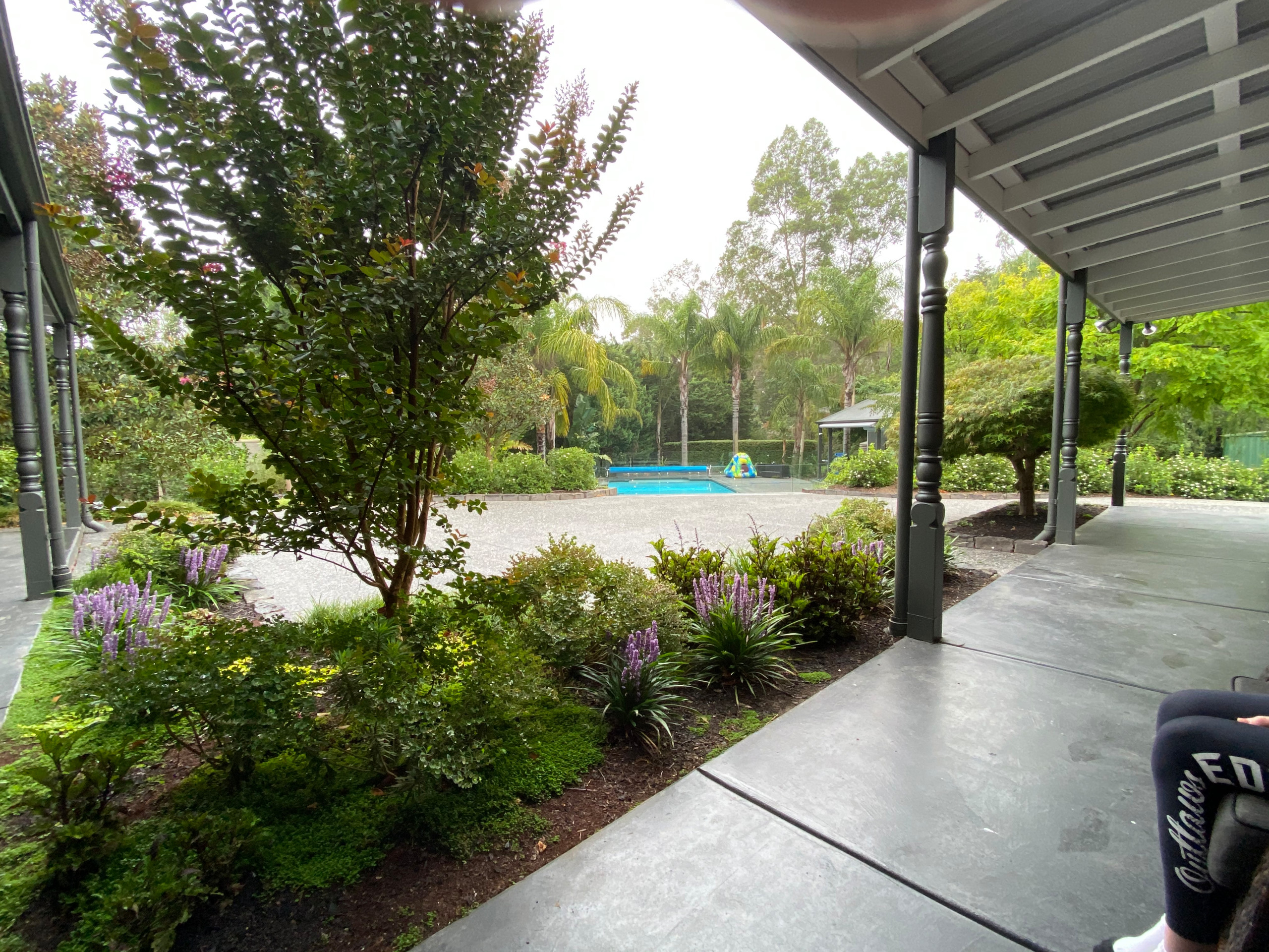 Pool Design and Planting in Wonga Park