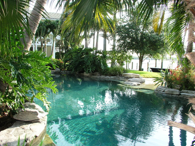 tropical pool by MJM Design Group, Inc.