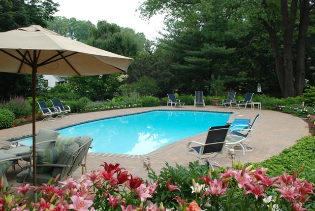 Pool Patio Residence traditional-pool
