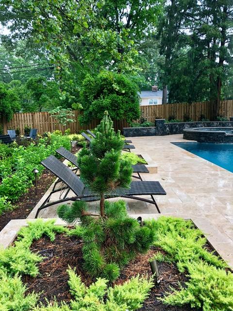 Pool - contemporary pool idea in Charlotte