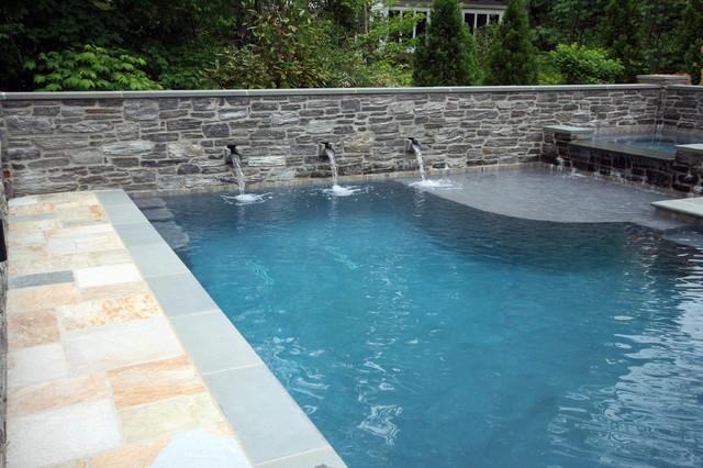 Pool spa patio traditional-pool