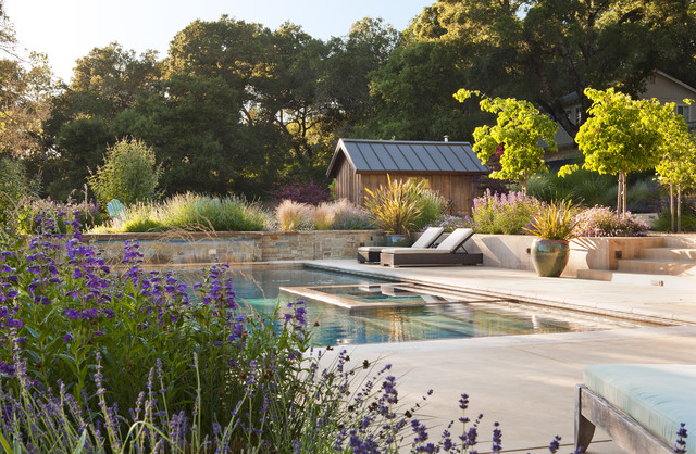 Pool with spa rustic pool other metro by arterra for Houzz landscape architects