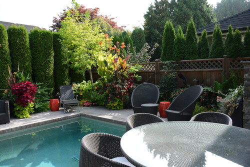 Gardening tips the lovely plants for Pool design vancouver