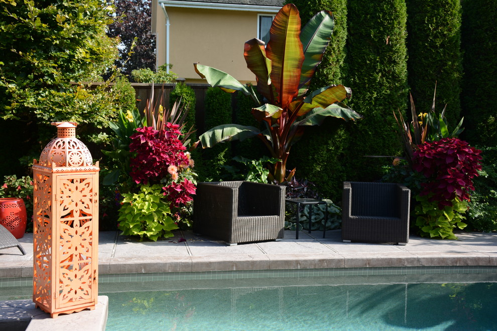 Example of an island style pool design in Vancouver