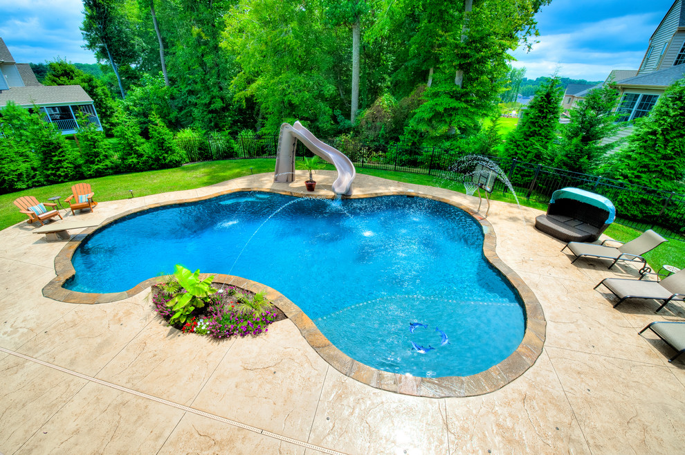 Precision Pool With Slide Diving Board Tanning Ledge Basketball Goal Tropical Pool Baltimore By Precision Pools Of Maryland
