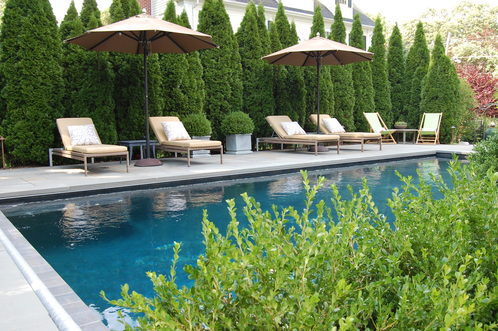 Example of a mid-sized classic backyard rectangular lap pool design in New York