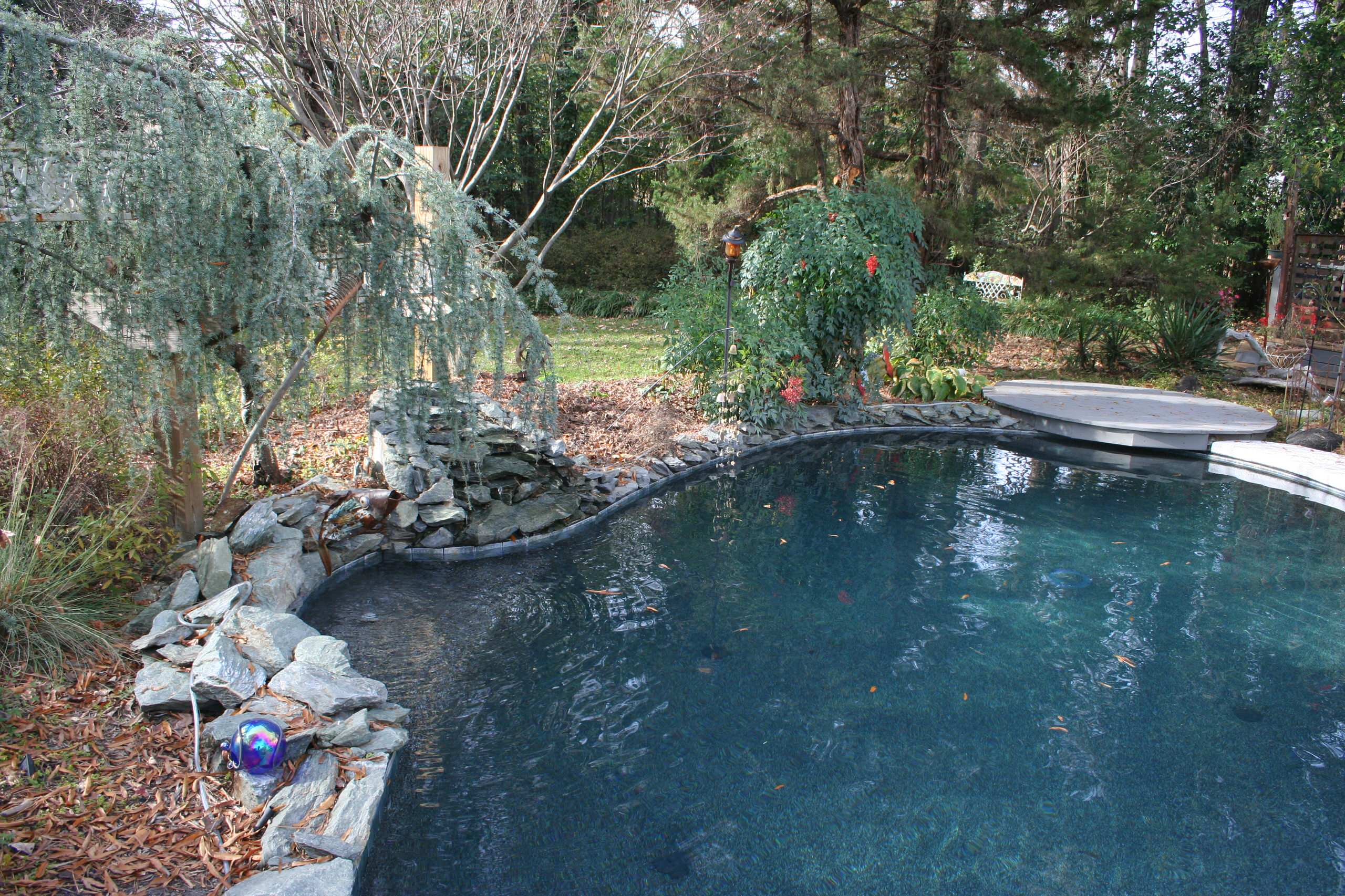 Renovation Pool