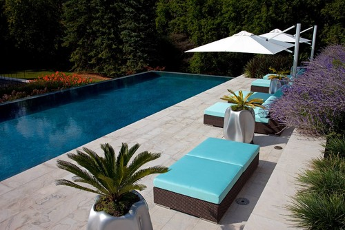 Residential home modern pool